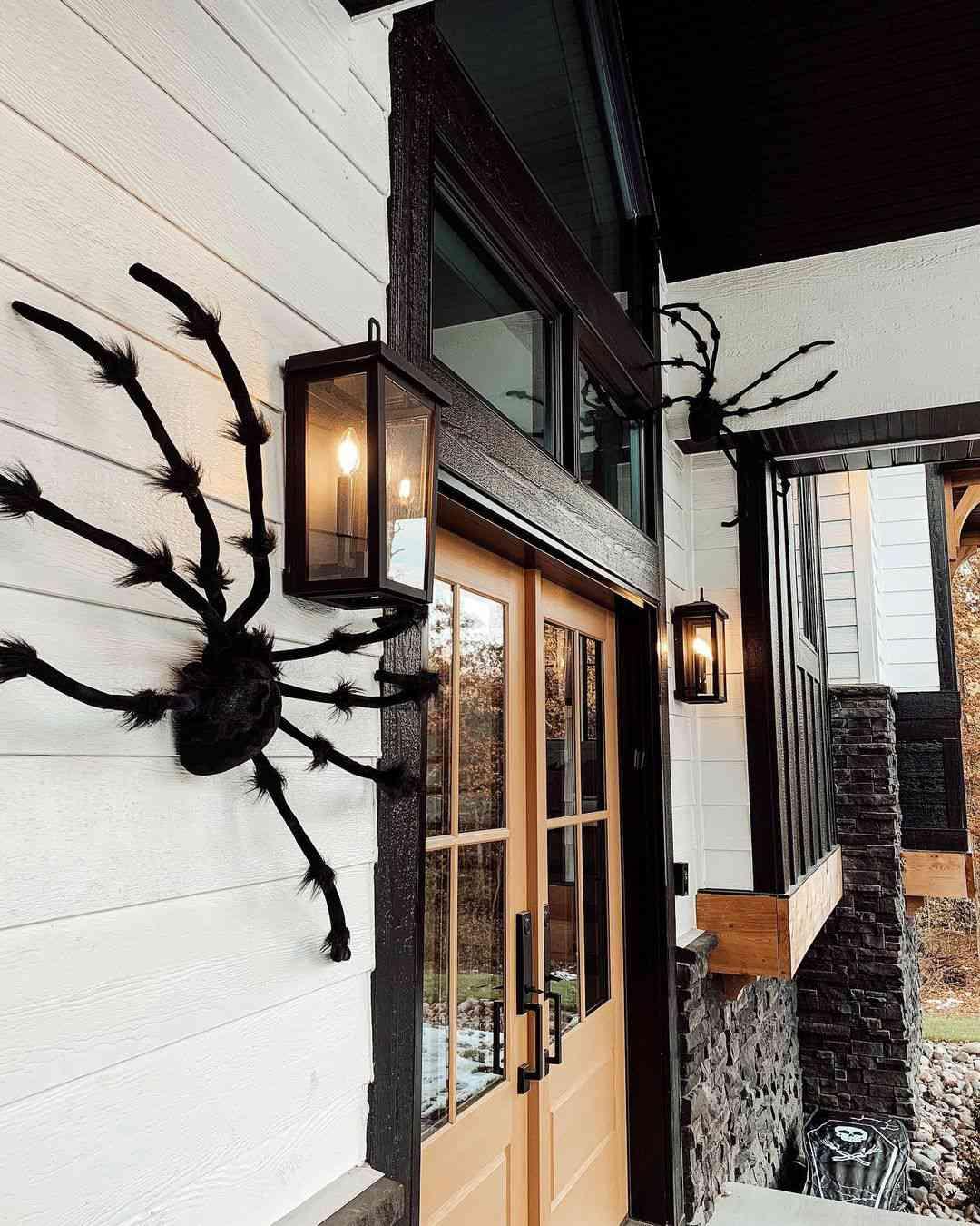 Large spiders on door
