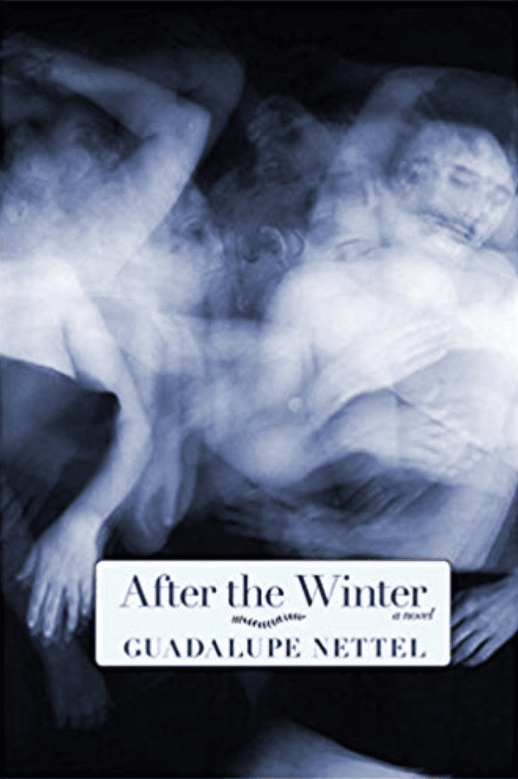 After the Winter by Guadalupe Nettel book cover