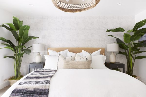 Beachy bedroom with two large banana plants.