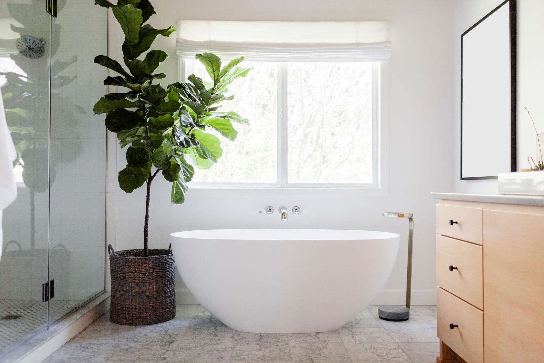 The 10 Plants That Will Be Happiest in Your Bathroom
