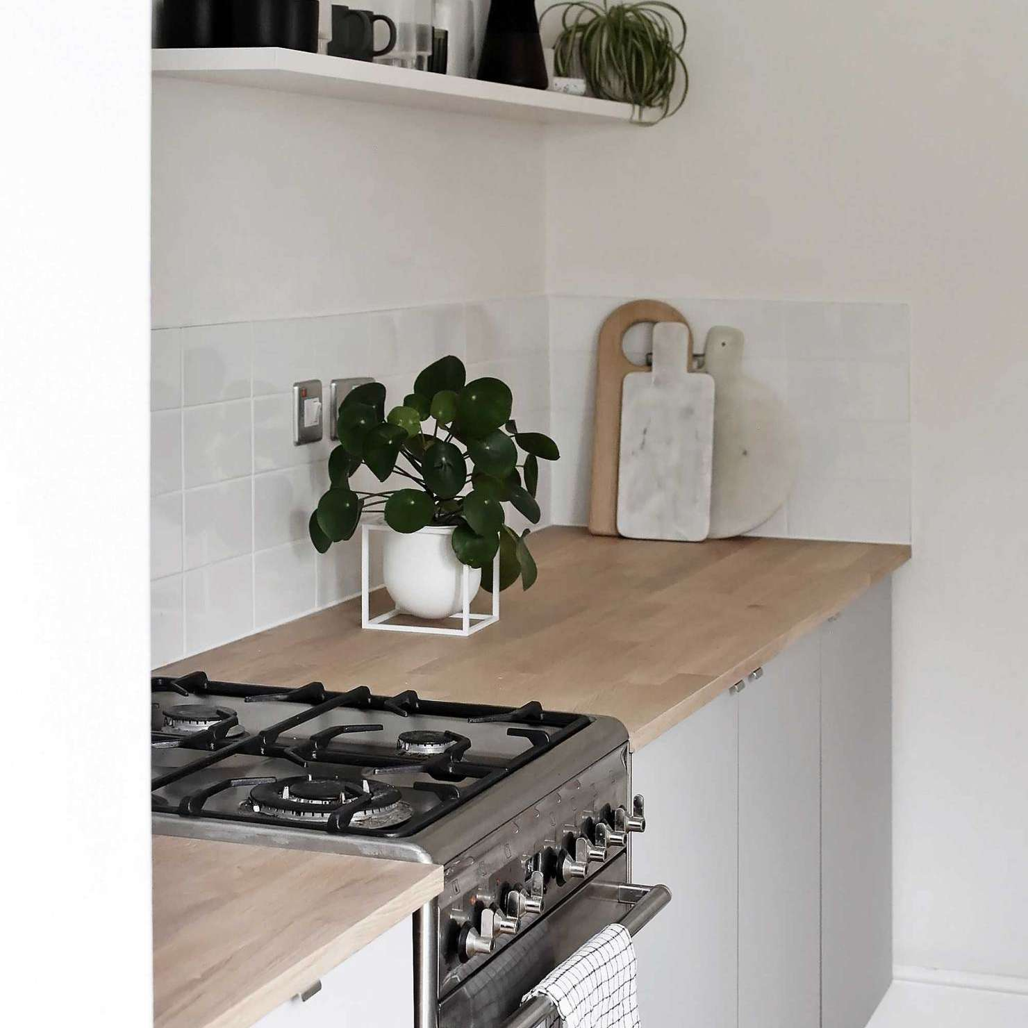 Kitchen with wooden countertops and small plant.