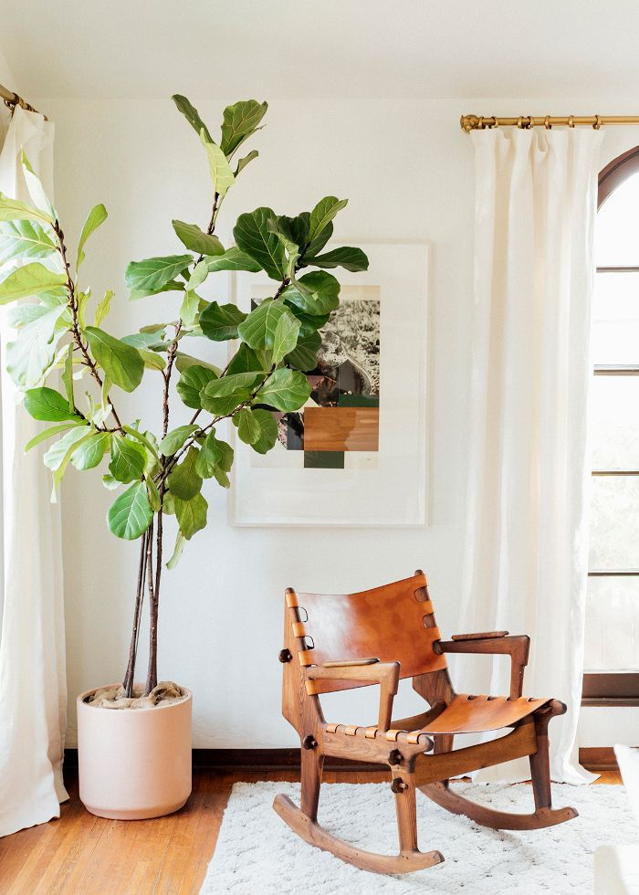 a rocking chair and tall plant