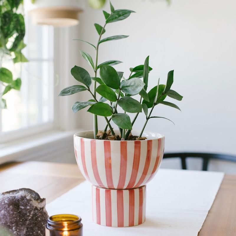Kaya 2-Piece Ceramic Bowl Planter