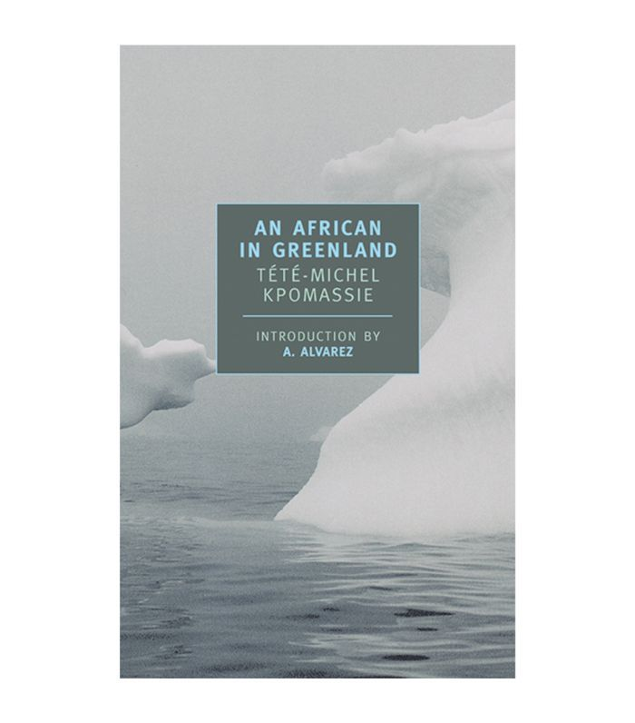 An African in Greenland Best Adventure Books