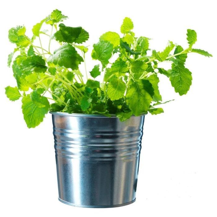 IKEA Galvanized Steel Flower Plant Pot, Set of 6