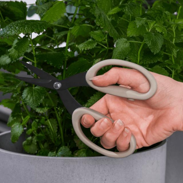 JACKFRUKT Herb Scissors