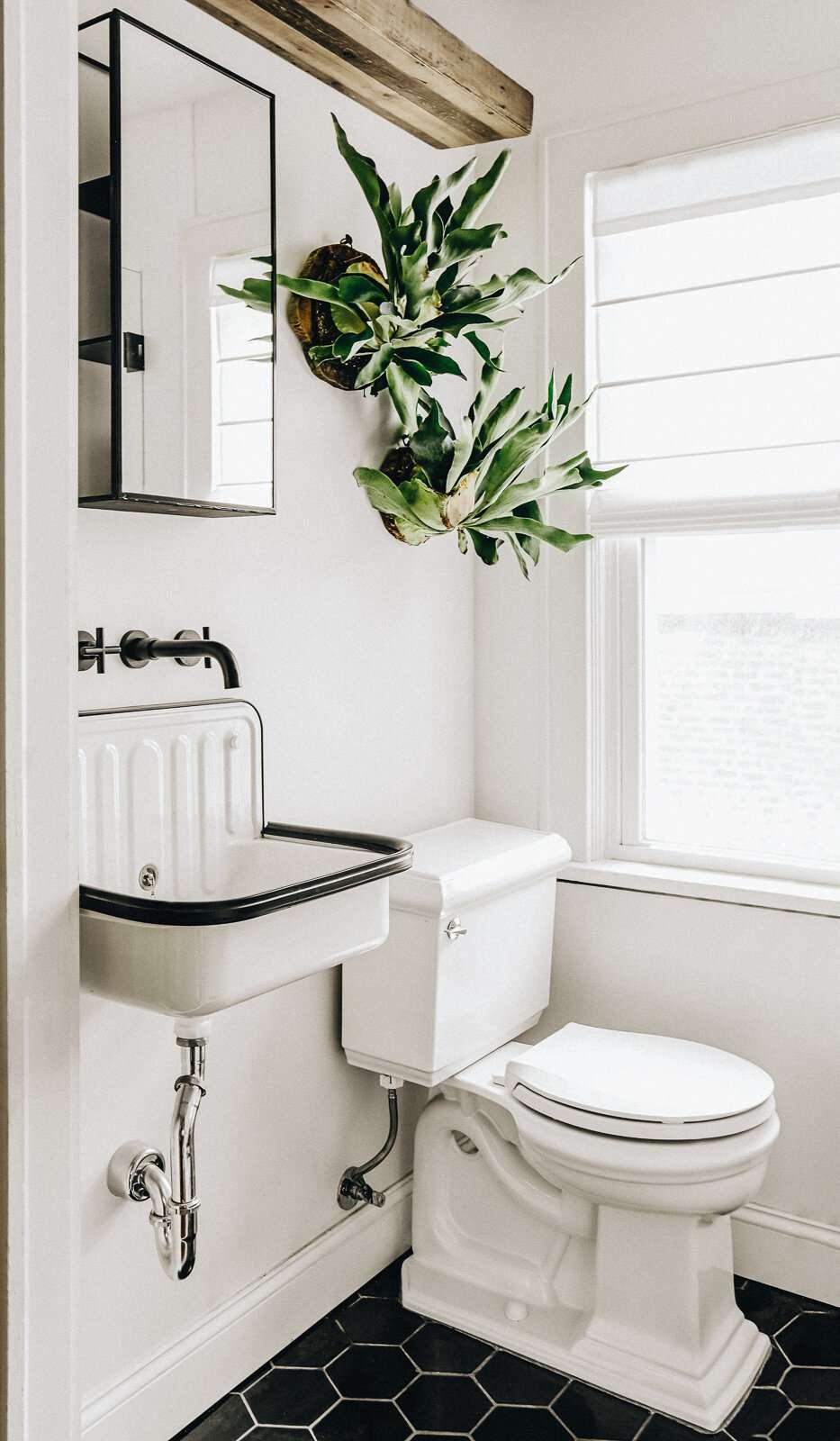 Modern farmhouse bathroom with black hexagonal tile, live hanging plant
