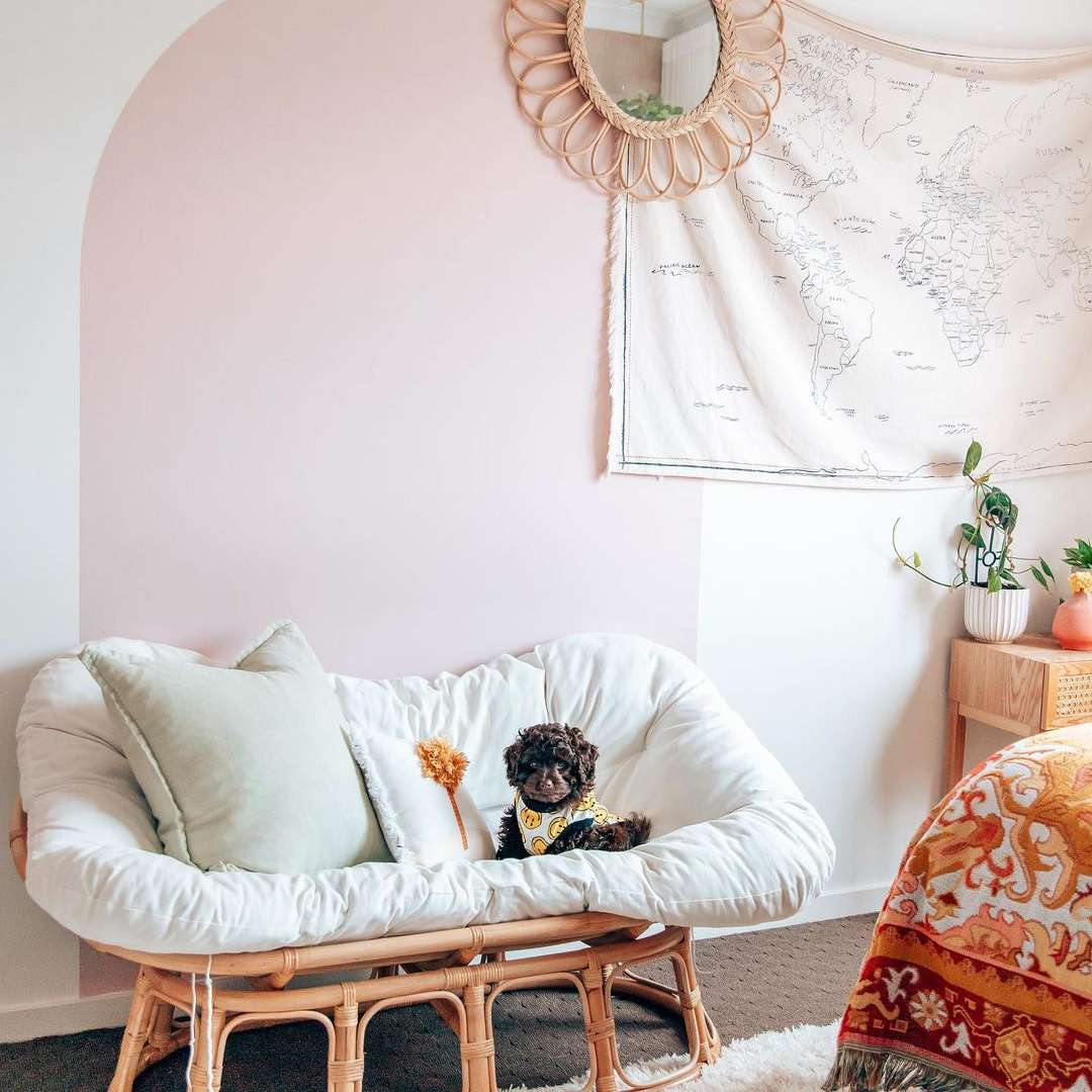 Small adorable dog in boho lounge chair.
