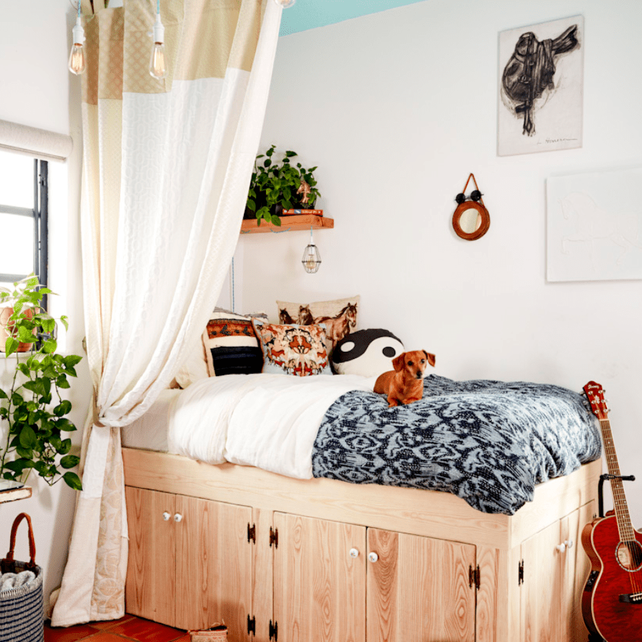 Groovy teen bedroom with small dog on top of bed.