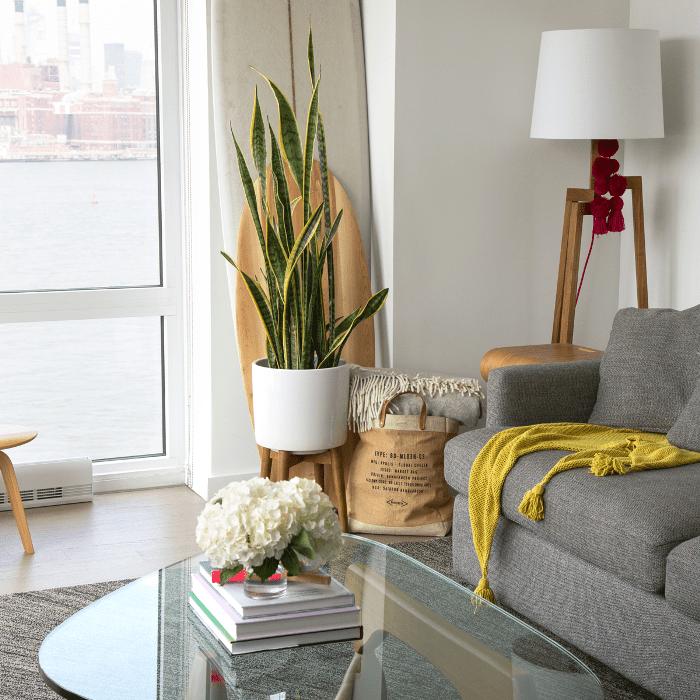 Recorrido por los apartamentos de Williamsburg: sala de estar