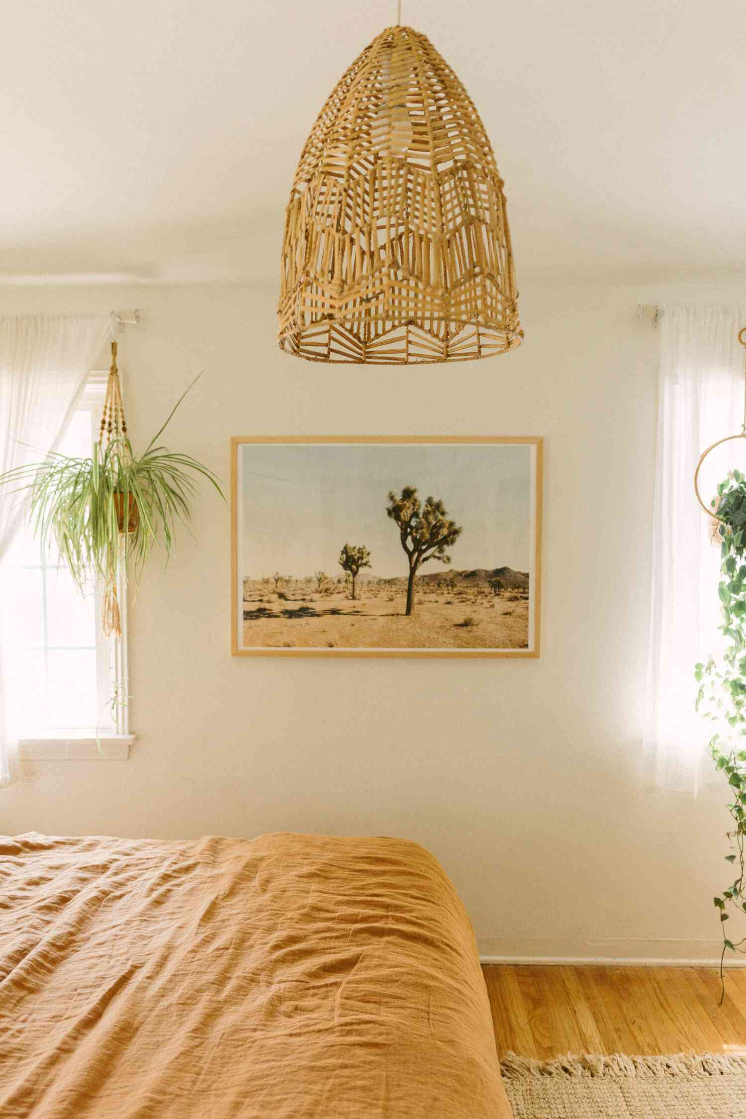Spider plant hanging in a bright boho bedroom window