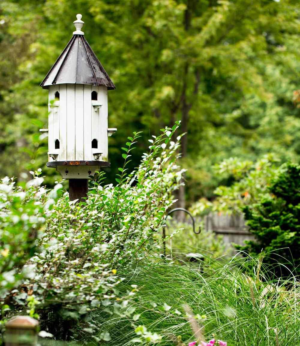 A birdhouse in a yard.