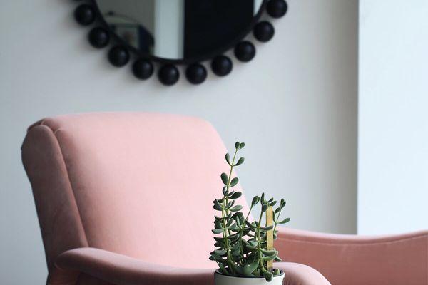 best window plants: jade