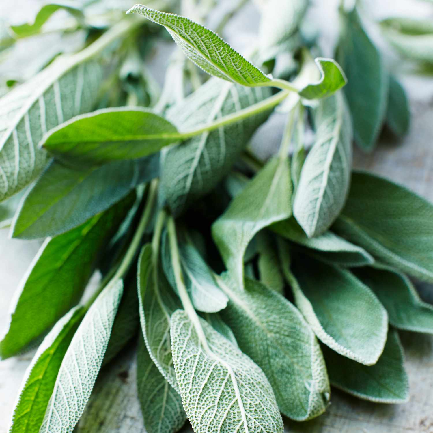 bunch of sage leaves on wooden table