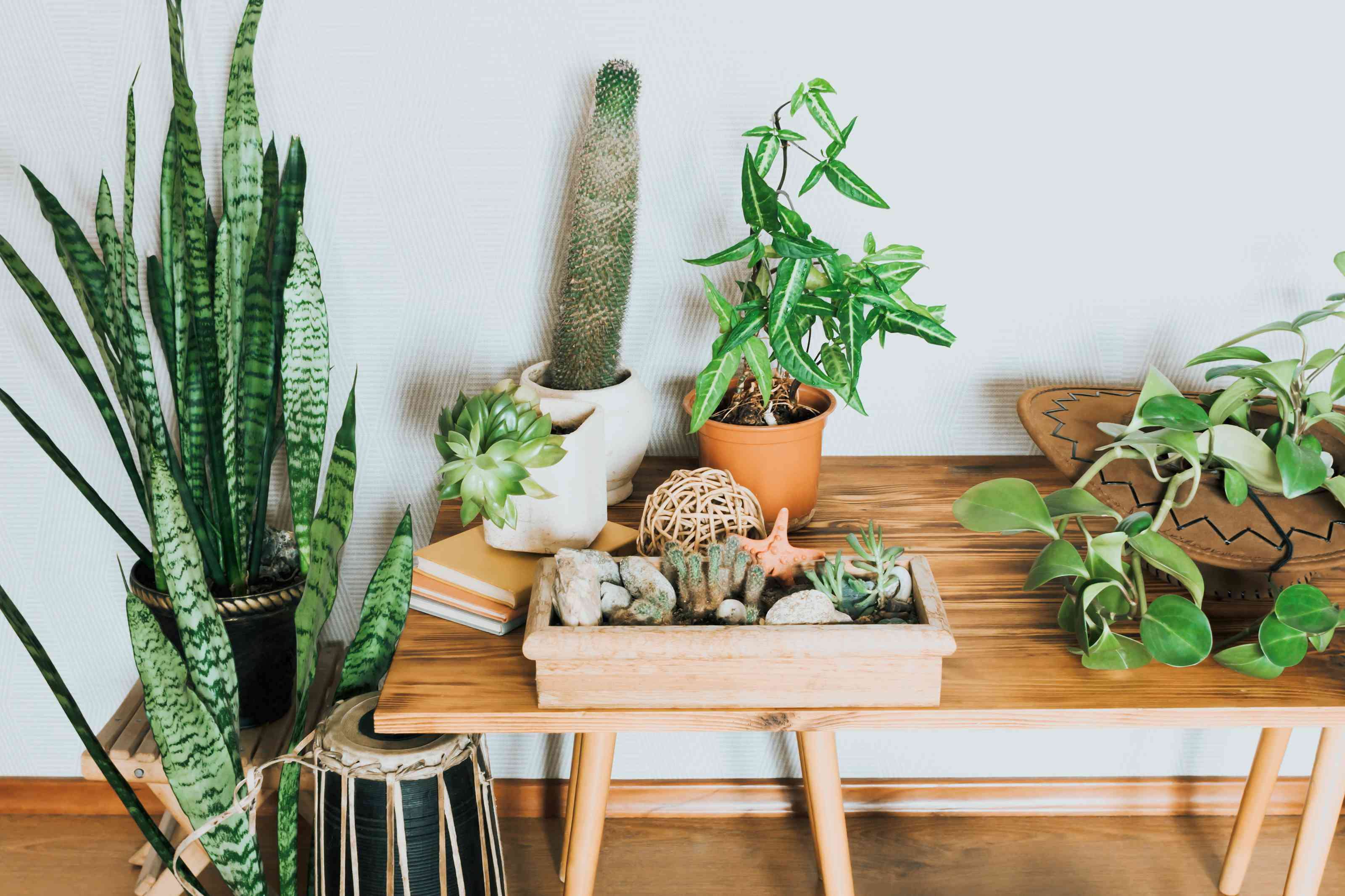 15 Fake Houseplants That Look Like the Real Thing