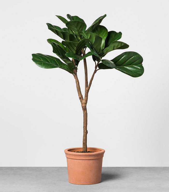 Hearth & Hand with Magnolia Potted Fiddle Leaf