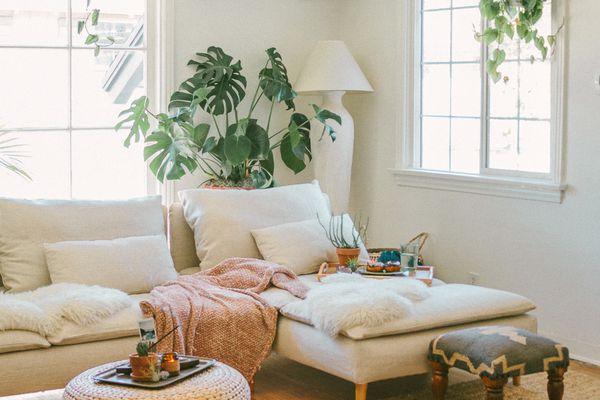 boho living room with plants
