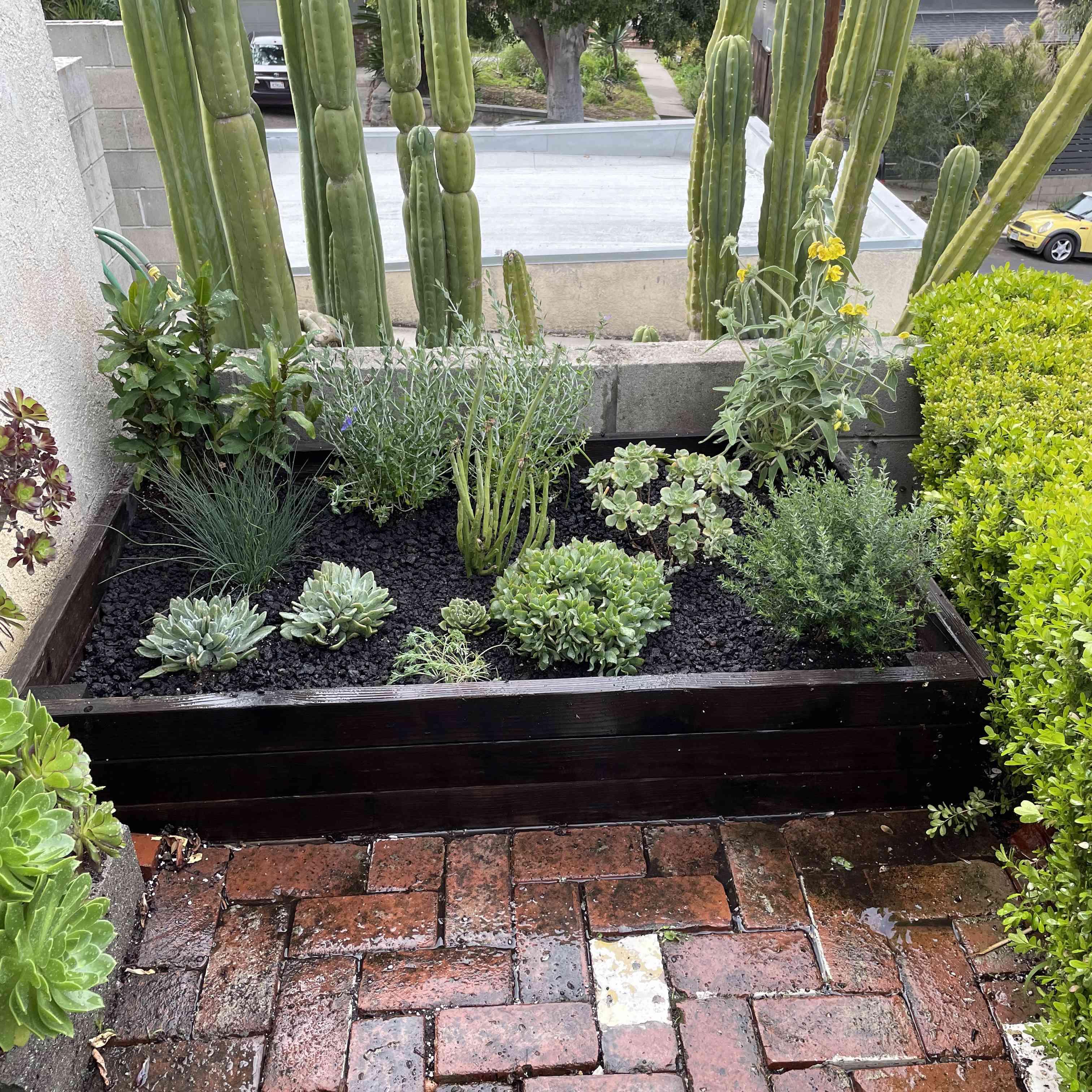 Outdoor plant box