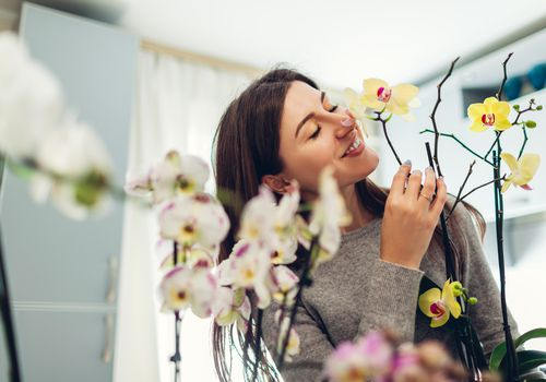 A person surrounded by several orchid plants