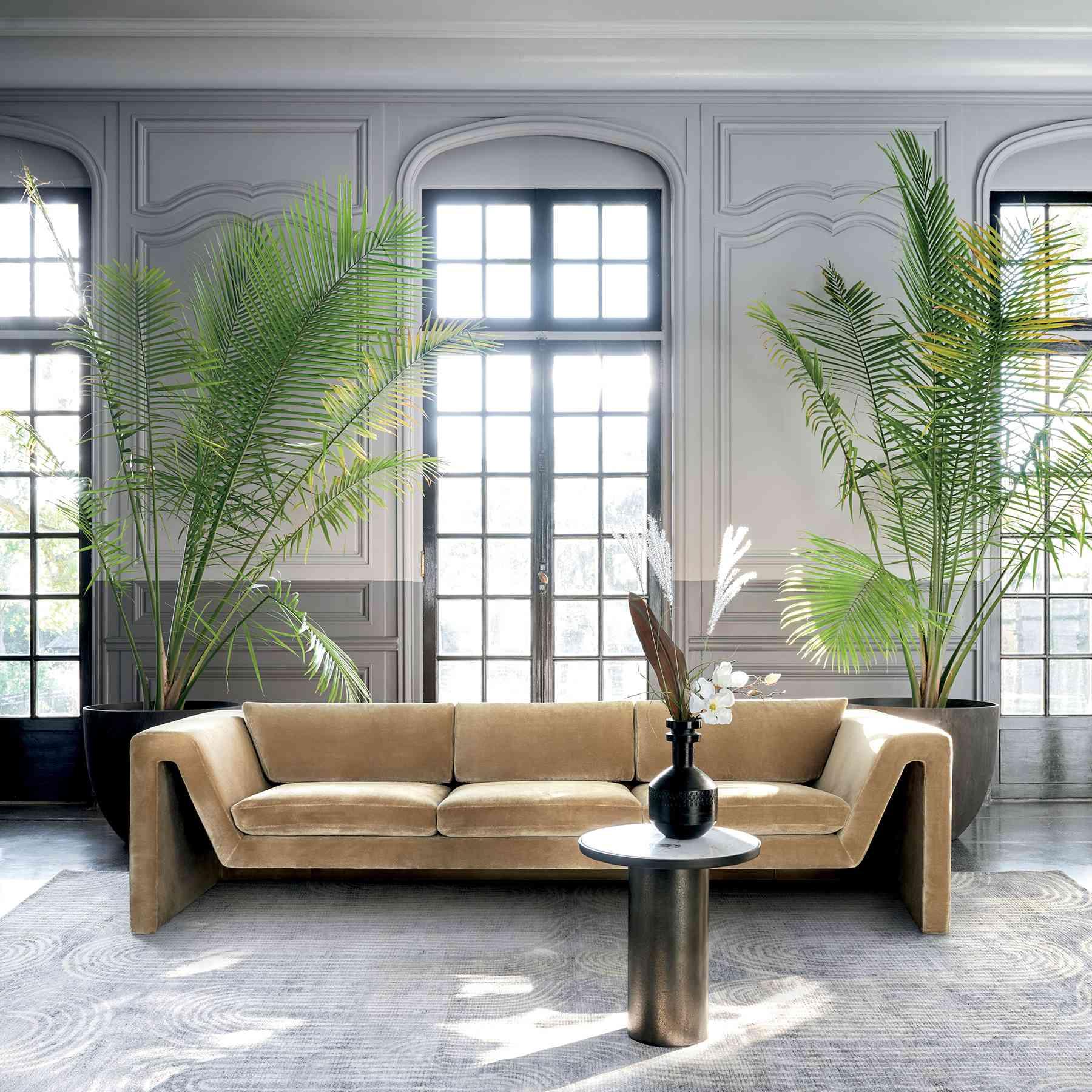 CB2 2021 Design Trends - velvet sofa and oversized plants