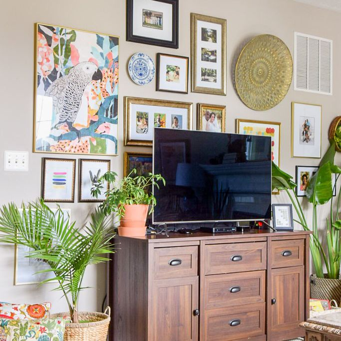 indoor plants safe for cats: parlor palm