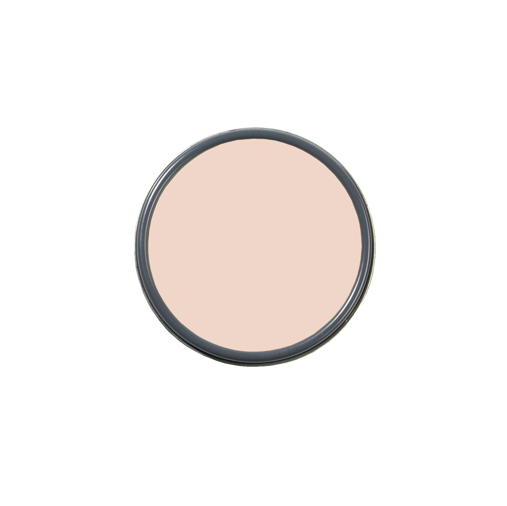 best living room paint - farrow & ball pink ground