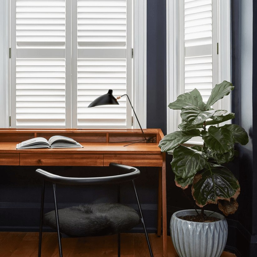 A home office with indigo walls, white windows, and a wooden desk