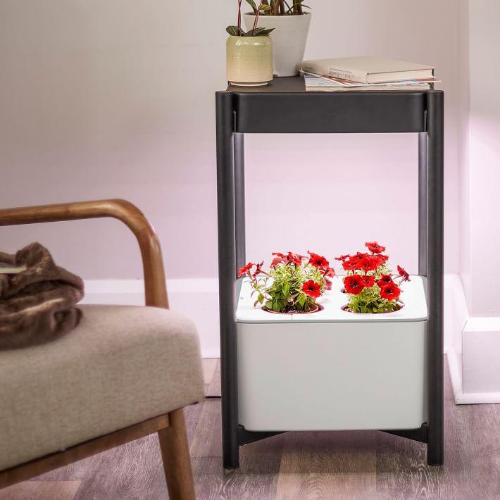 Miracle-Gro® Twelve™ Indoor Growing System